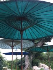 Parasollträdgården
